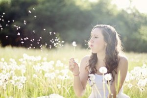 dandelions-609253_1280